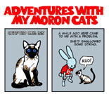 To read last week's Bun Toon featuring my idiot cat, click above.