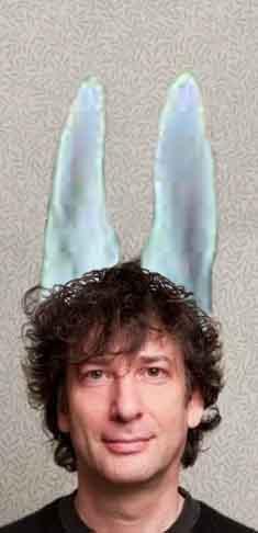 bunny neil