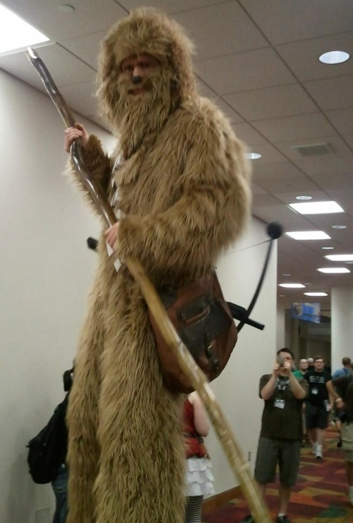 Figure One:  The Stilt Wookie!