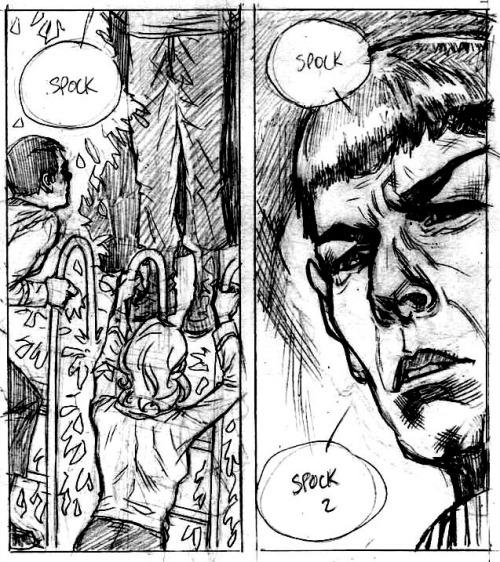 spock idw panel